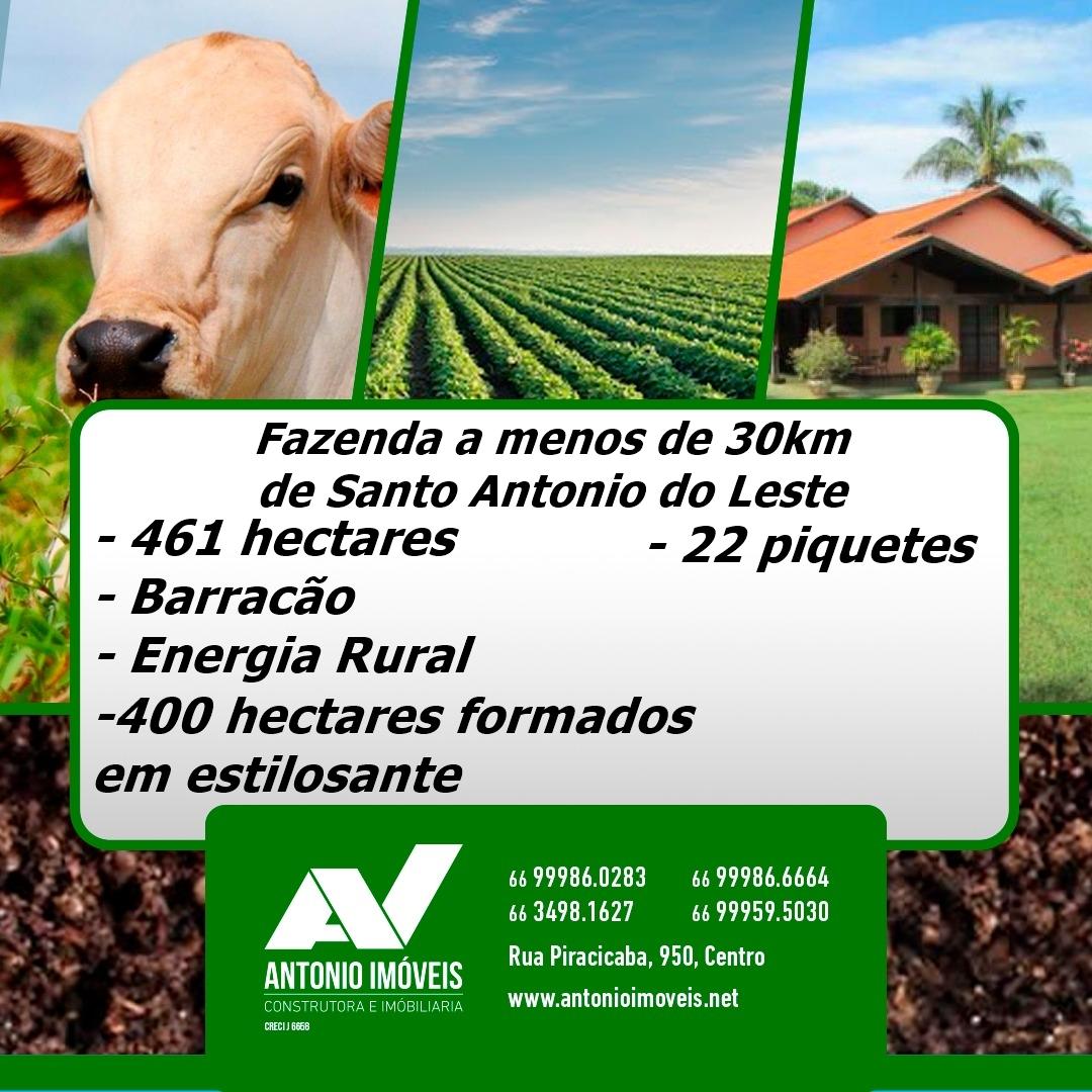 Cod. 157 – Fazenda em Santo Antonio do Leste