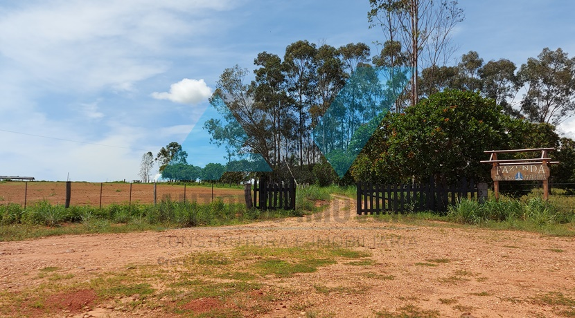 Cod. 214 – Fazenda com 607 hectares.