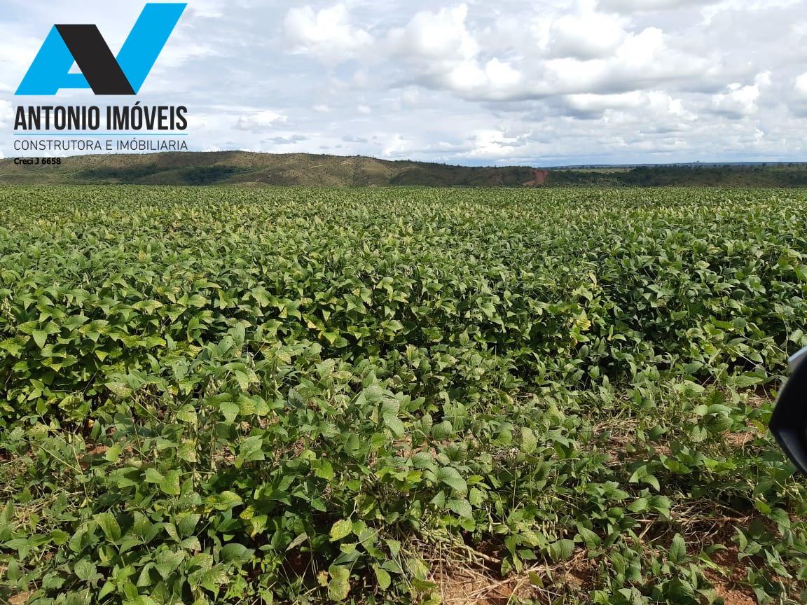 Cod. 158 – Fazenda de 760 hectares para lavoura a 110km de Primavera do Leste