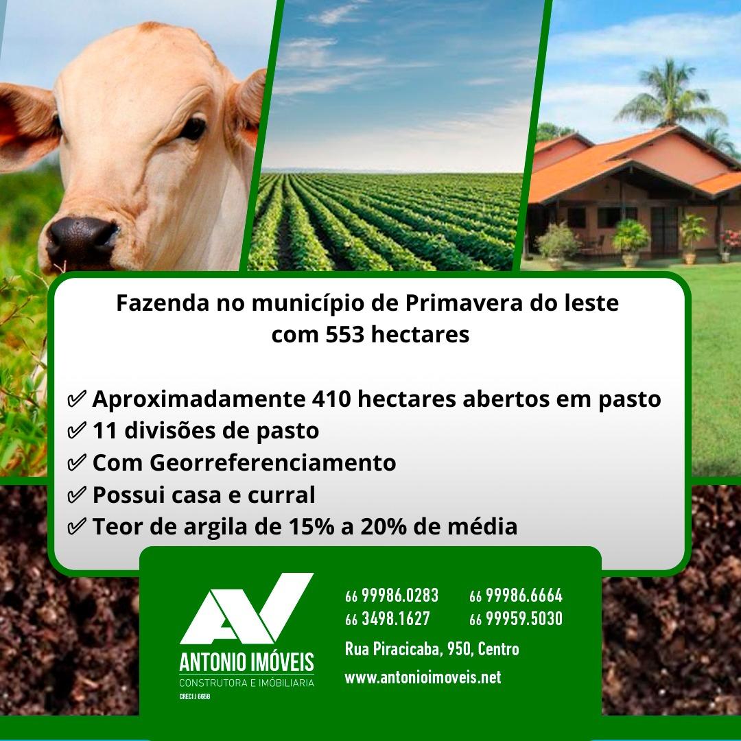 Cod. 068 – Fazenda no município de Primavera do leste com 553 hectares